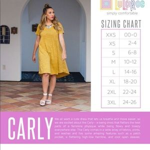 LuLaRoe Dresses - LuLaRoe high-low Carly dress, loose fit